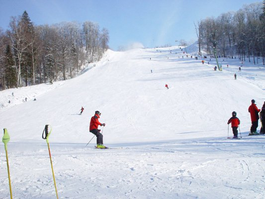 В Печенгском районе появится лыжная трасса