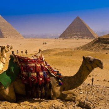 Египет пообещал спонсировать белорусские чартеры: за каждое кресло туроператорам могут компенсировать 40 у.е.
