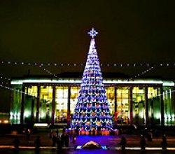 Новогодние ели в Минске засверкают огнями 16 декабря