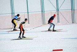 Строительство лыжероллерной трассы в Чаусском районе планируют завершить в 2014 году