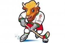 18 декабря состоится выездное заседание коллегии Минспорта, посвященное приему гостей ЧМ по хоккею