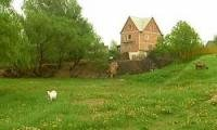 Беларусь получила в собственность сочинскую землю в Красной Поляне