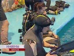 Столичный дельфинарий организовывает дайвинг с дельфинами для всех желающих