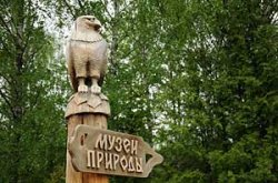 Музей природы в Березинском заповеднике открыт после реконструкции