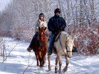 Конные прогулки -- популярная атракция в усадьбе «Старые липы»