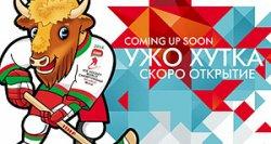 Выставка современного искусства пройдет в Беларуси к ЧМ-2014 по хоккею