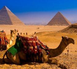 Александр Берестов, «Техностар»: «Сообщение из Твиттера не причина для отказа от туров в Египет»