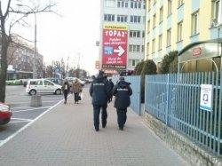 Польская таможня принимает очередные меры борьбы с нелегальной торговлей сигаретами из Беларуси и Калининграда