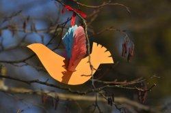 На выходных: «Гуканне вясны», фестиваль цеппелинов или «Весенний калейдоскоп»