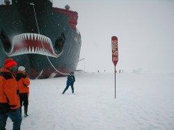 Арктика останется без туристов?