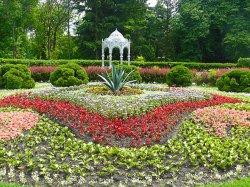 Праздничные мероприятия пройдут в Центральном ботаническом саду 9 мая