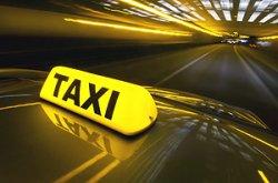 В Дубае откроется парк бабочек и появятся такси без водителей