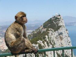 Гибралтар назвали самым разочаровывающим местом в мире