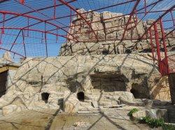 Осенью экзотариум в Минском зоопарке будет готов к заселению