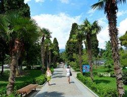 Особый сезон: туристов в Крыму пока вдвое меньше, цены на жилье – прежние
