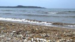 Украинские туристы хотят заменить крымское побережье болгарским