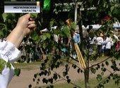 В дни празднования Святой Троицы на Могилёвщине «крестили кукушку»