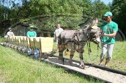 В агротуристическом комплексе «Каробчыцы» появилась детская железная дорога, выполненная из дерева