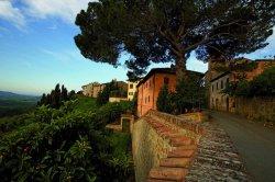 Заброшенную деревню в Тоскане превратили в курорт