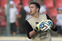 Вратарь сборной Уругвая обнаружил муравейник в своем гостиничном номере