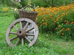 В окрестностях Сувалок и Августова действует около 400 агротуристических объектов