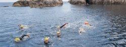 На побережье Коста-Брава туристам предложат поплавать в открытом море