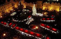 Прага «готовит сани летом»: объявлен конкурс на лучшую новогоднюю елку страны