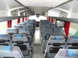 Из Минска в киевский аэропорт Борисполь пустили дополнительный автобус