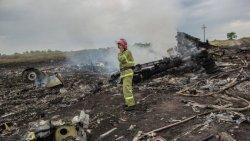 Блогер: Голландия в ужасе. В самолете летели в основном туристы, было много детей!