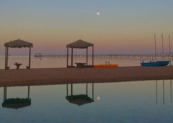 Отдых в Египте: как выбрать надёжного туроператора и отель без тараканов. Могилевчане поделились отрицательным и положительным опытом