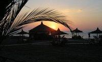 Грузинские туроператоры жалуются на уменьшение числа туристов