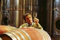 Спрос на винный туризм в Грузии увеличился
