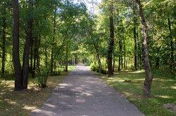 Парк имени Советской Армии в Витебске будут благоустраивать волонтеры молодежного проекта Ewoca3