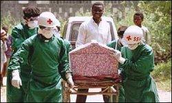 Несмотря на распространение вируса эбола, россияне по-прежнему бронируют туры в Африку
