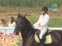Под Гродно отметили День лошади