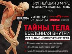 Выставка «Тайны тела. Вселенная внутри» откроется в Минске 3 октября (+ фото)