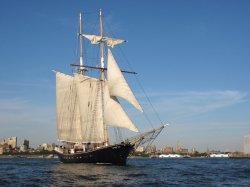В США туристическое судно село на мель у статуи Свободы