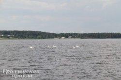 Спа-центры и яхт-клуб могут появиться на берегах Гродненского моря