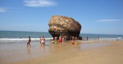 Андалузские пляжи уже начали готовиться к купальному сезону