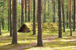 В 2015 году в Витебской области появится туристический маршрут по партизанским тропам