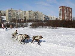 В Мурманске надеются на приток алкотуристов в связи с падением рубля