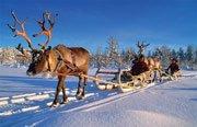 В деревне под Рованиеми устраивают Рождественскую феерию