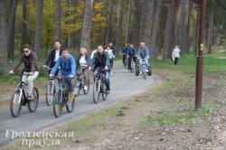 Тропа здоровья в Пышках останется пешеходной, а для велосипедистов появится дорожка-дублер