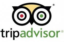 Сервис TripAdvisor уличили в поддельных рецензиях на гостиницы и рестораны и оштрафовали на 500 тыс. евро