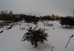 Израильтяне с разных концов страны прибывают посмотреть на «настоящую европейскую зиму»