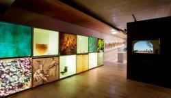 Музей вина в Пенедесе выдвинут на европейскую премию «Музей года»