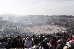 В Сельчуке прошел Фестиваль верблюжьих боев