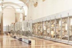 Музеи Болоньи создают годовые абонементы