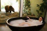 Отель с дикими животными открылся в Австралии