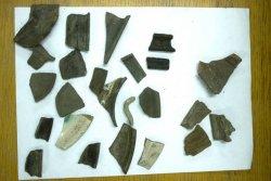 На территории Брестской крепости обнаружили новые находки